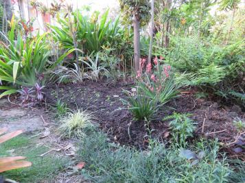 garden planting natives rain 002_5184x3888