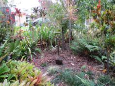 garden reno 030_4000x3000