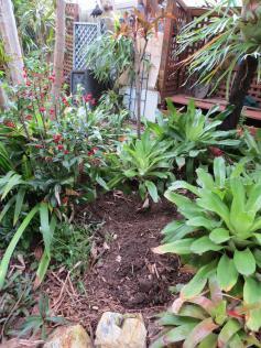 garden reno 031_3000x4000