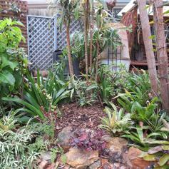 garden reno 032_4000x3000