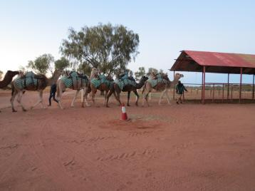 outback tour uluru pc 004_4000x3000