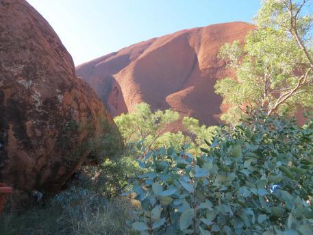 outback tour uluru pc 064_4000x3000