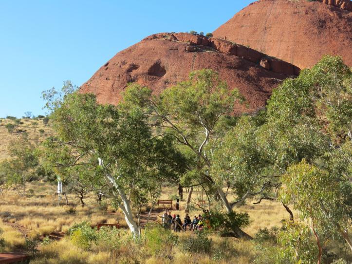 outback tour uluru pc 235_4000x3000