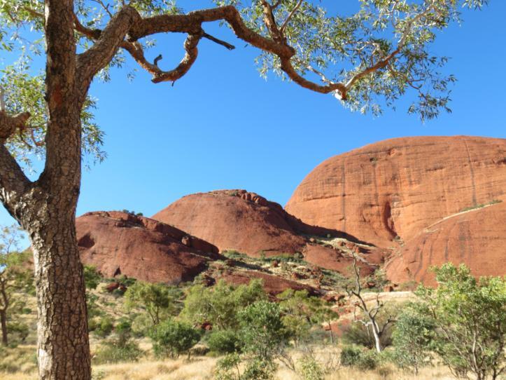 outback tour uluru pc 244_4000x3000