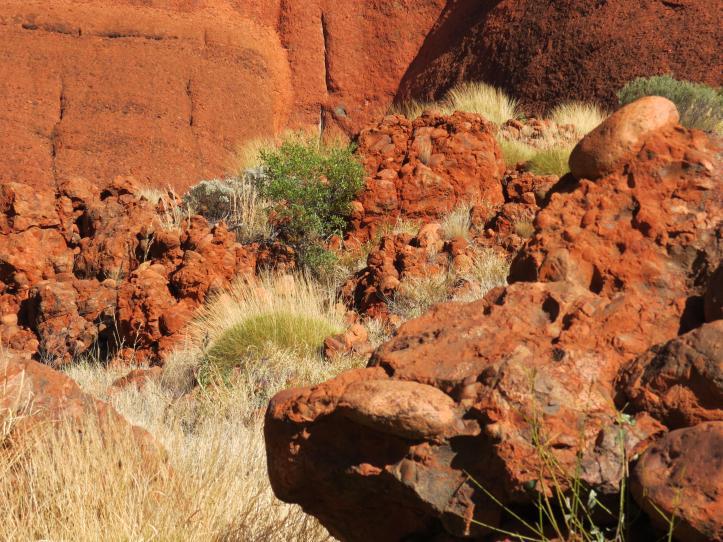 outback tour uluru pc 261_4000x3000