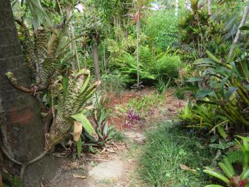 serenity garden 002_5184x3888
