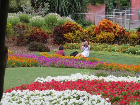 Brisbane art gallery roma street gardens 215_5184x3888