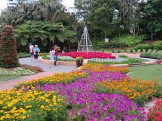 Brisbane art gallery roma street gardens 222_5184x3888