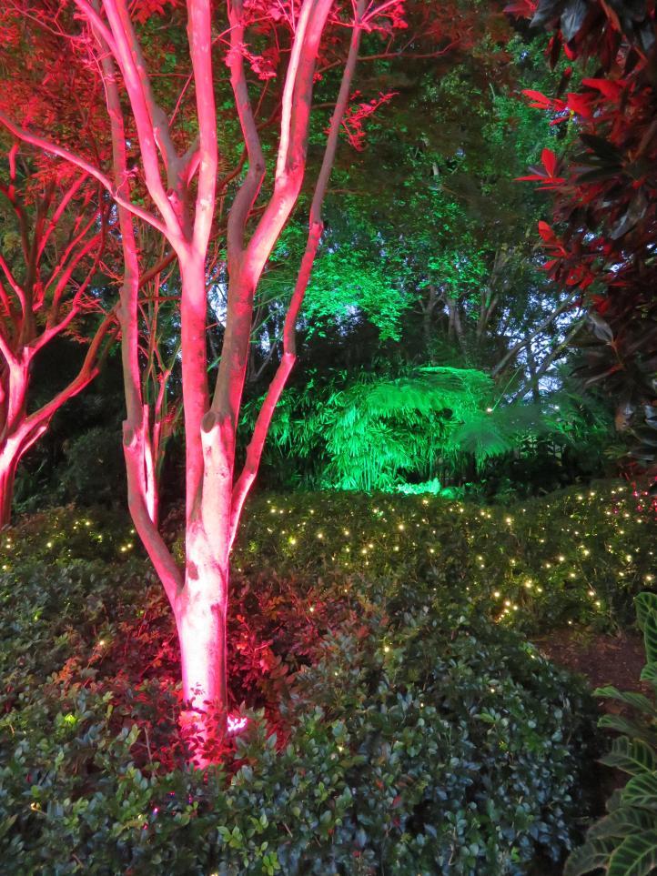Brisbane art gallery roma street gardens 309_3888x5184