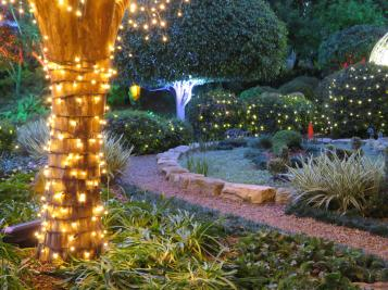 Brisbane art gallery roma street gardens 311_5184x3888