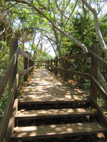 fingal beach walk with Jade 010_3888x5184