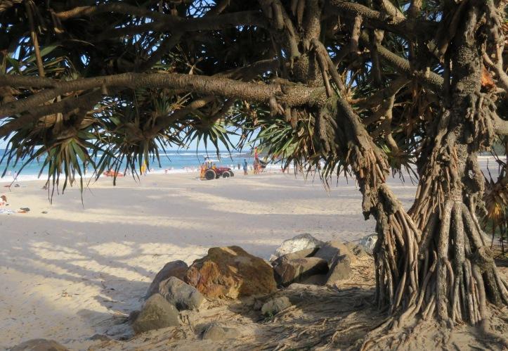fingal beach walk with Jade 089_5184x3888 crop