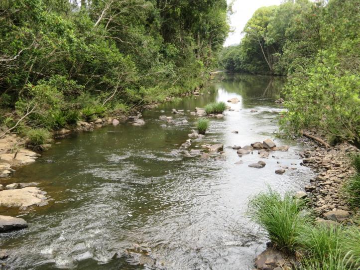 river-2_5184x3888