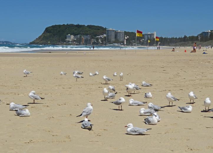 beach 008_4777x3435