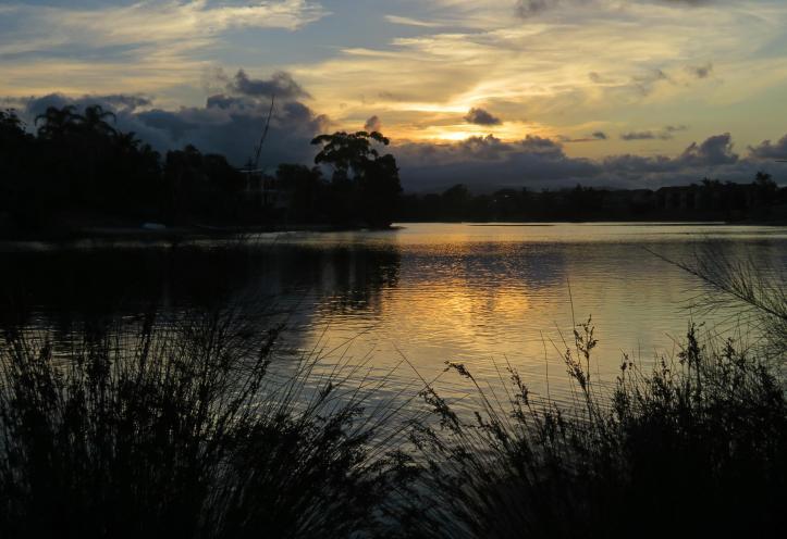 beach sunset pelican lake 084_5005x3434