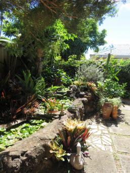 5 min garden 003_3888x5184