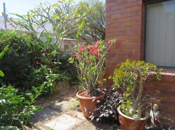 5 min garden 029_4653x3481