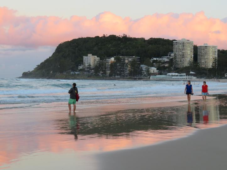 dog beach 031_5184x3888