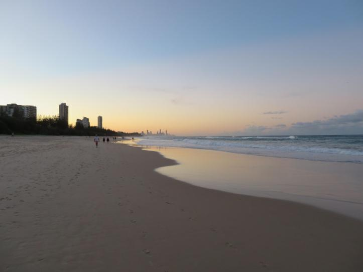 dog beach 058_5184x3888