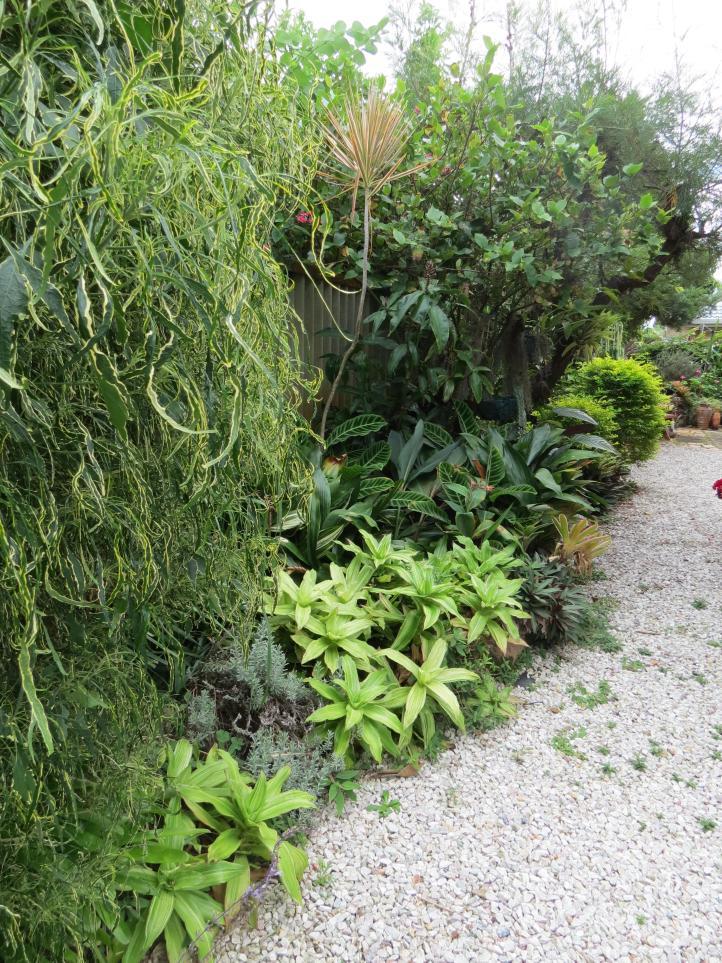 garden green april 050_3000x4000