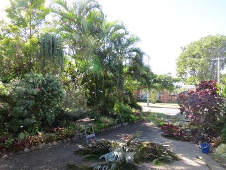 garden pruning 003_4000x3000