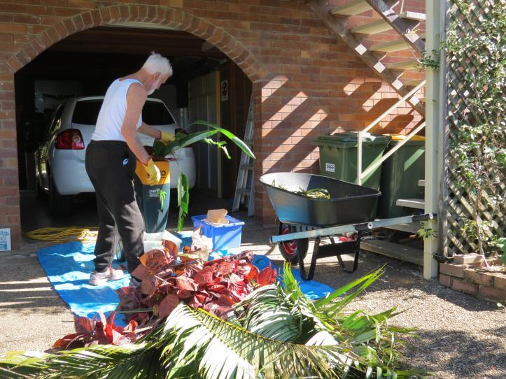 garden pruning 007_4000x3000