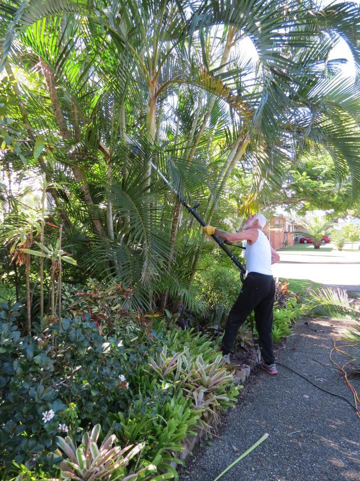 garden pruning 008_3000x4000