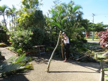 garden pruning 012_4000x3000