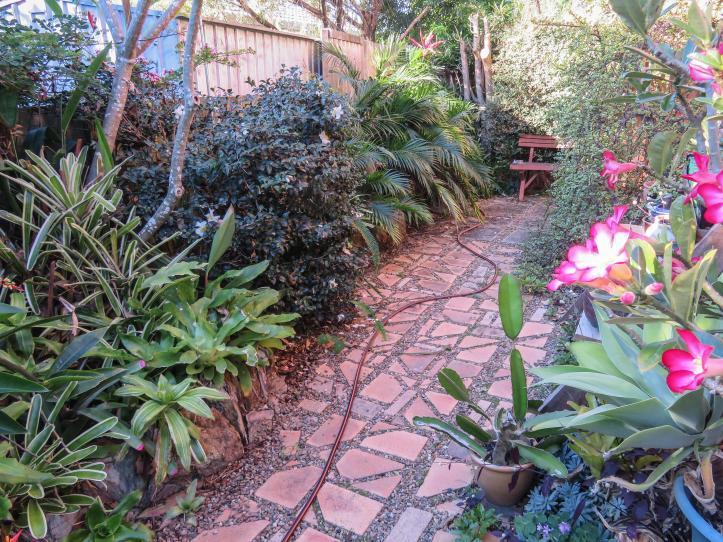 side garden (1 of 17)_4700x3525