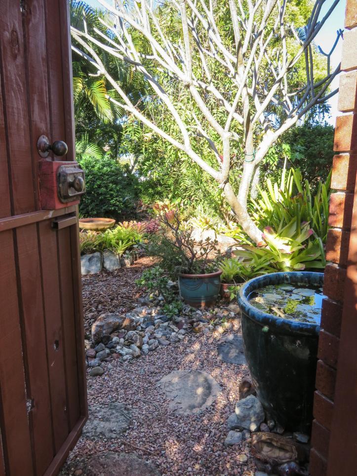 side garden (11 of 17)_3687x4916