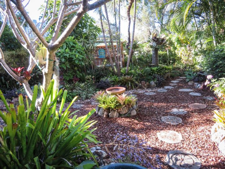 side garden (16 of 17)_5184x3888
