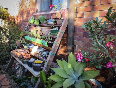 side garden (3 of 17)_4833x3680
