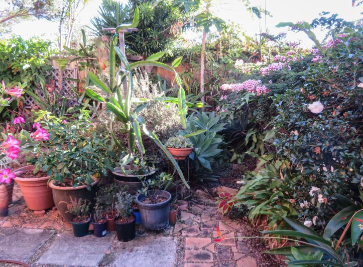 side garden (6 of 17)_4657x3438