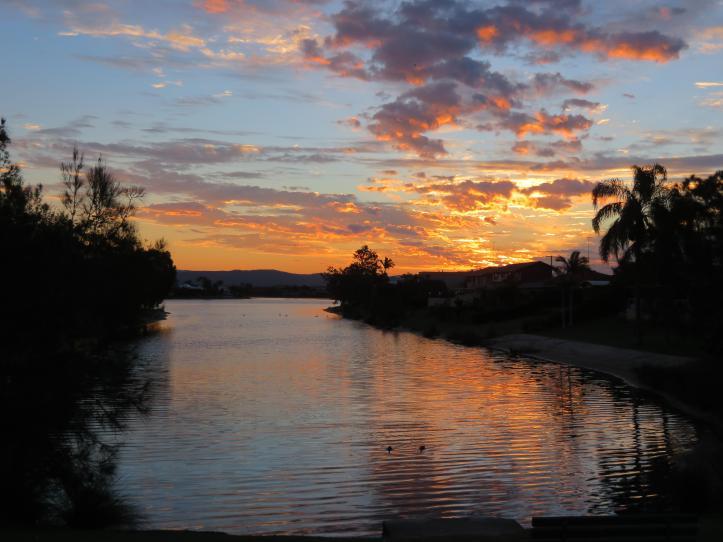 sunset swans leaves 030_5184x3888