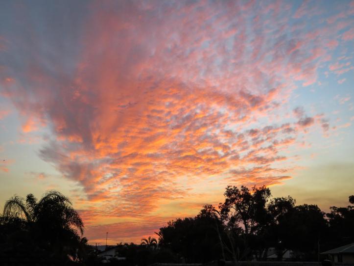cloudds (1 of 6)_5184x3888