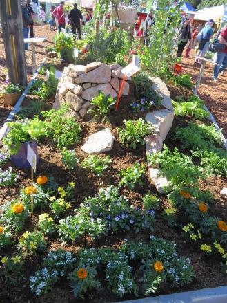 nambour garden expo 084