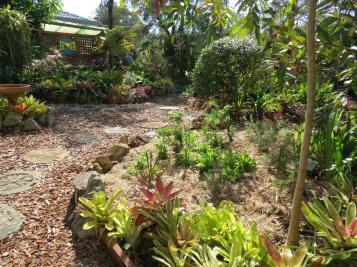 august garden 2 018_4000x3000