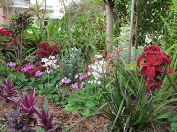 september garden 007_4000x3000