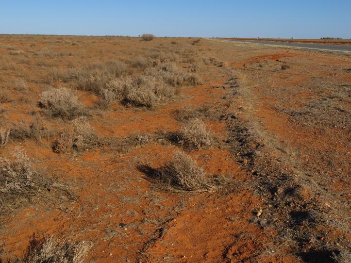 Broken Hill road trip 124_5184x3888