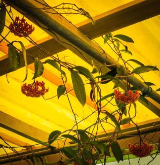 oct garden (1 of 35)_2769x2866