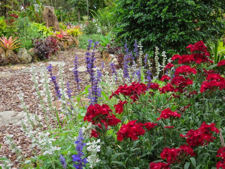 oct garden (14 of 35)_4000x3000
