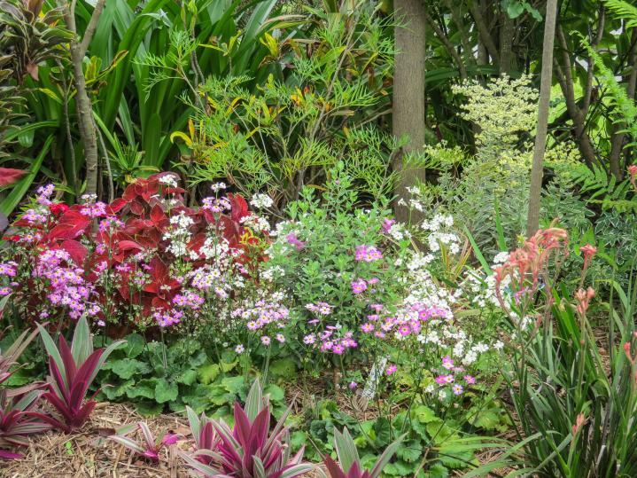 oct garden (15 of 35)_4000x3000