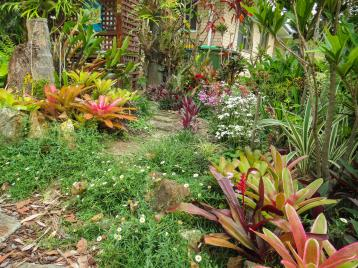 oct garden (17 of 35)_4000x3000