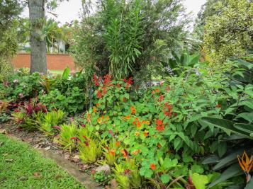 oct garden (18 of 35)_4000x3000