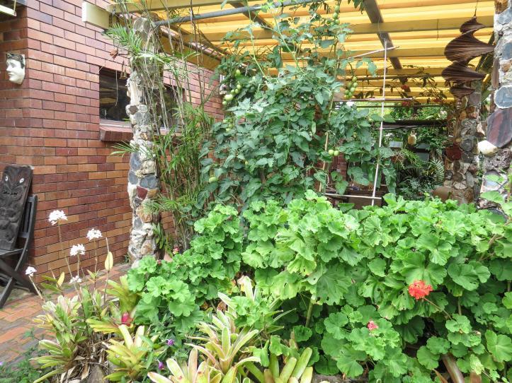 oct garden (2 of 35)_4000x3000