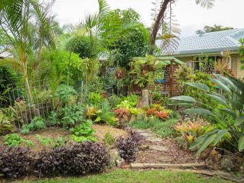 oct garden (21 of 35)_4000x3000