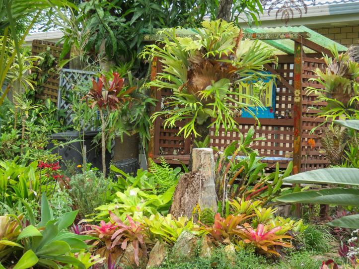 oct garden (22 of 35)_4000x3000