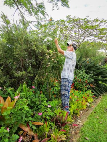 oct garden (31 of 35)_3000x4000