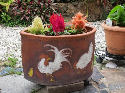 oct garden (35 of 35)_4000x3000