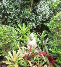 oct garden (6 of 35)_3000x3255
